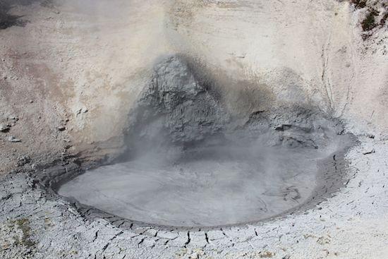 Gray Mud Pots