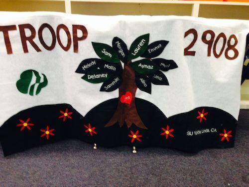 Troop 2908