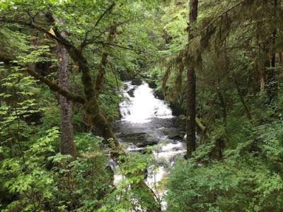 Ketchikan Waterfall